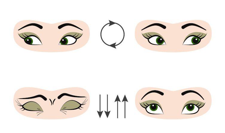 Exercices de gymnastique des yeux